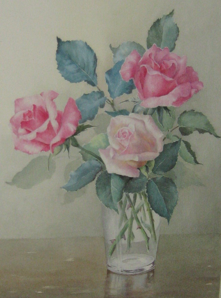 Madge Scattergood roses